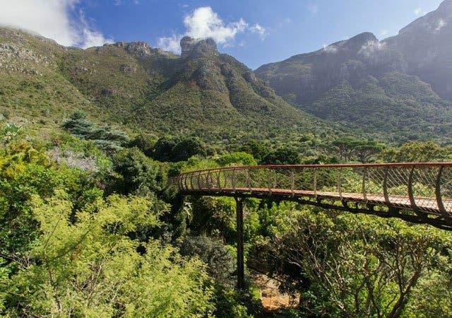 botanische tuinen Kaapstad