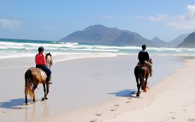 paardrijden kaapstad