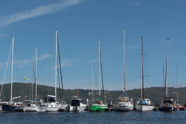 Knysna boats