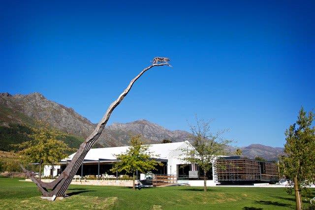 wijnhuizen franschhoek zuid-afrika