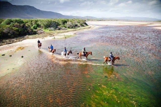 paardrijden zuid-afrika