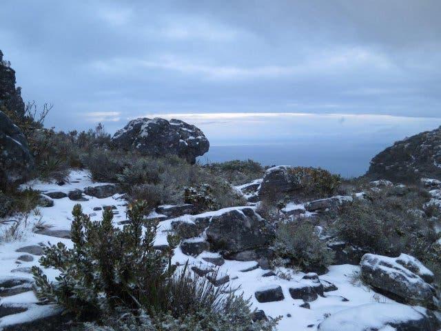 sneeuw Tafelberg