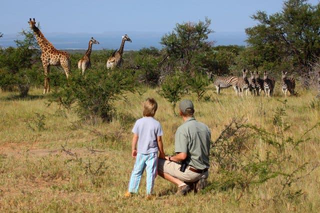 kindvriendelijke vakantie zuid-afrika