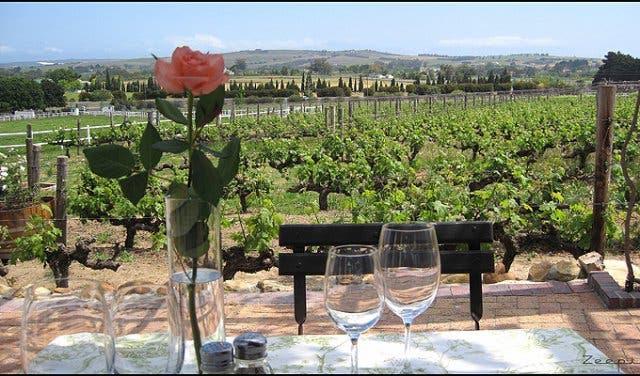 avontuur wijnhuis stellenbosch
